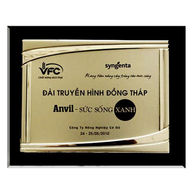 bang-vinh-danh-dong-qua-tang-dang-cap-viet-34