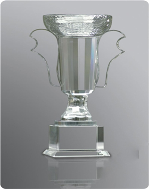 cup-pha-le-qua-tang-dang-cap-viet38