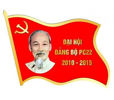 huy-hieu-qua-tang-dang-cap-viet1